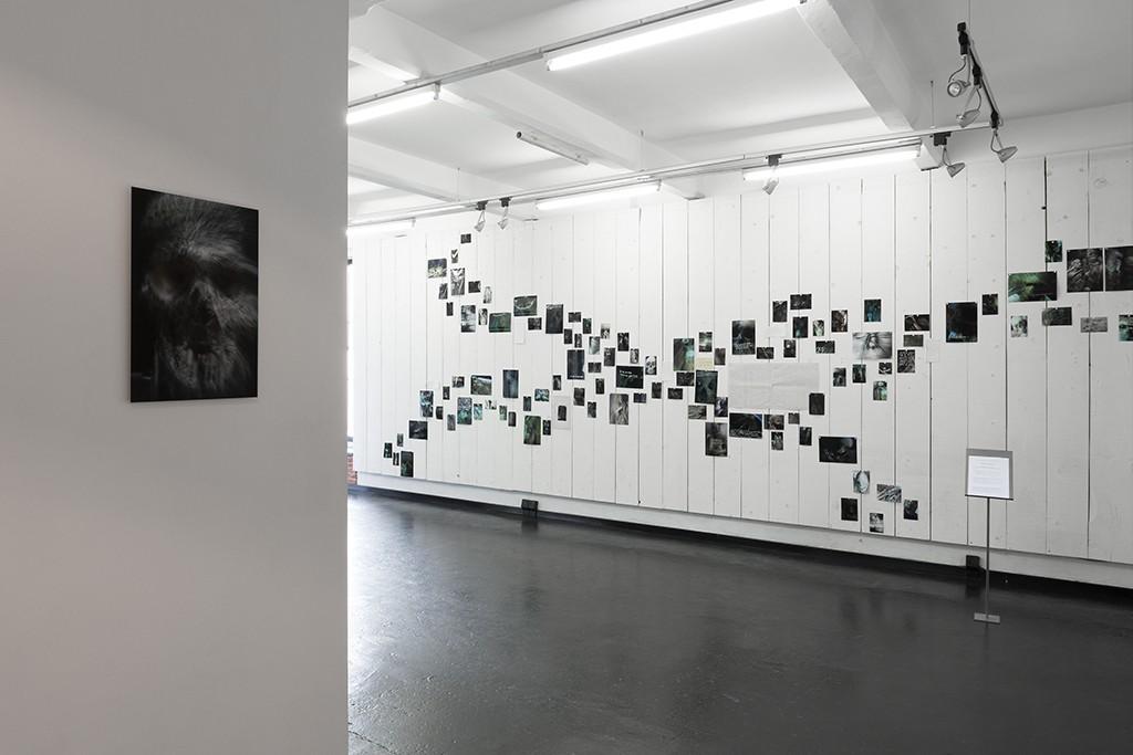 le mur des vanités_John Lippens_039