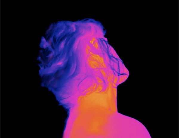 Dorothée smith, sans titre, série Spectrographies, 2014,,