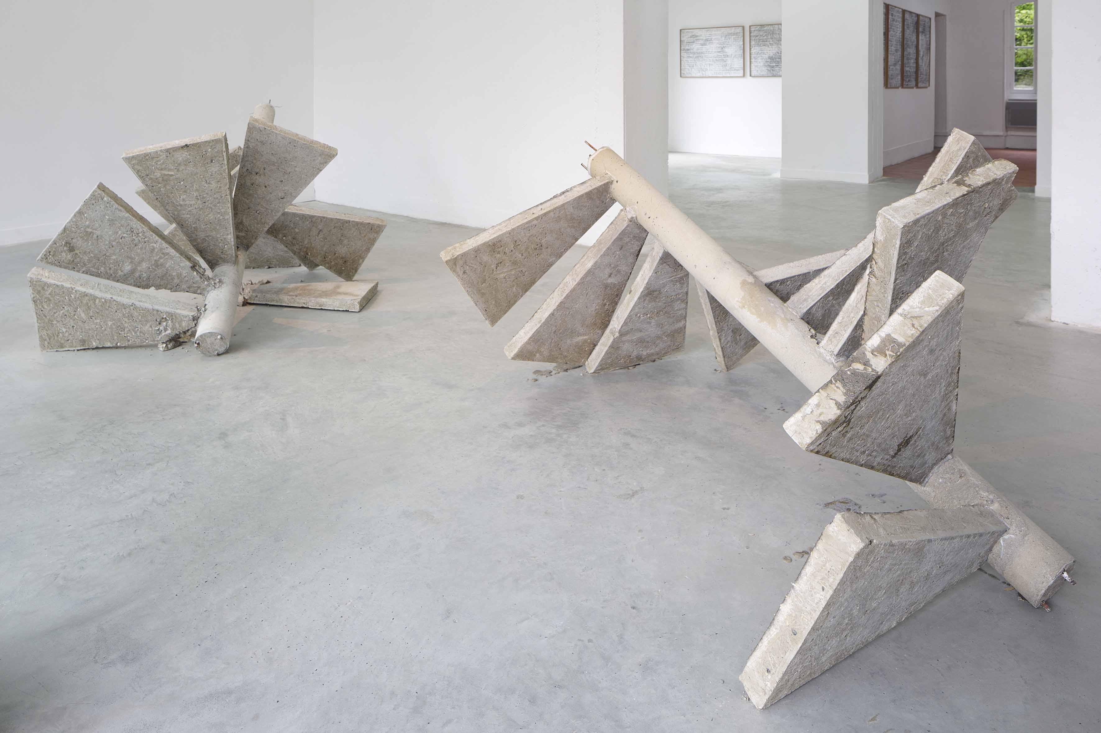 LE JOUR APRÈS LE LENDEMAIN, une exposition d'art contemporain de NICOLAS DAUBANES présentée à la Maison Salvan, Labège, du 31 mai au 6 juillet 2013