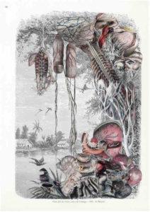 Melancholia Artificialis. Guillaume Pelloux