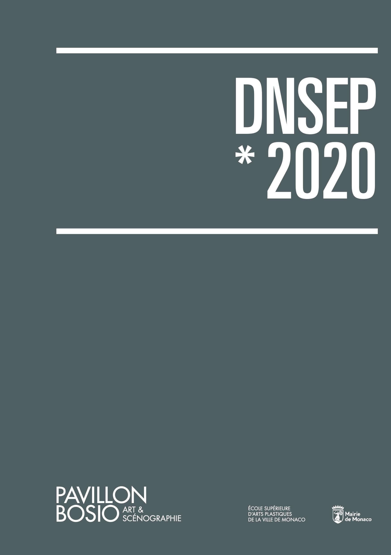 Catalogue DNSEP Pavillon Bosio